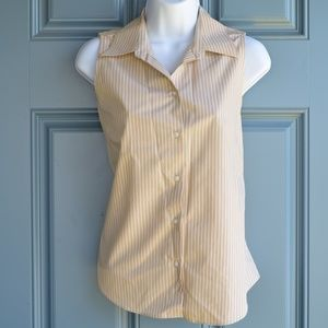 Striped Sleeveless Button Down Top by Ann Taylor
